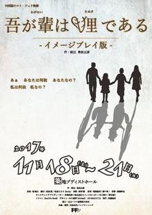 20171118_tanuki.jpg